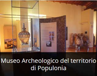 Museo Arch pop